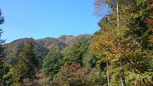 2015102406