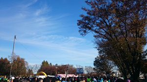 2015112902
